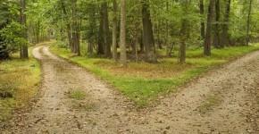 een mooie route hardlopen (5)