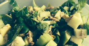salade appel makreel 5