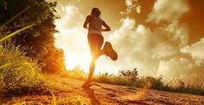 heelhardlopen - marathonschema fase 2 Volume2